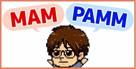 MAM(マム)とPAMM(パム)の違い